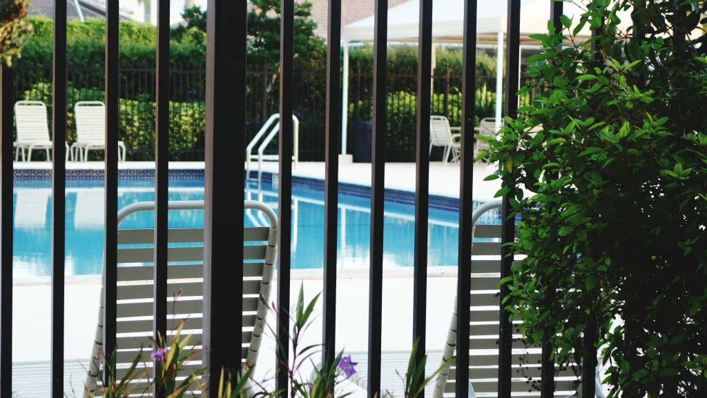 best poolside plants